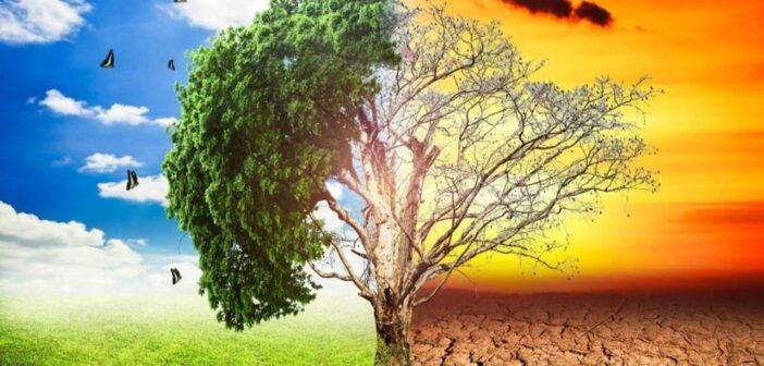 Cambio climático: El antes y después de 10 paisajes drásticamente transformados